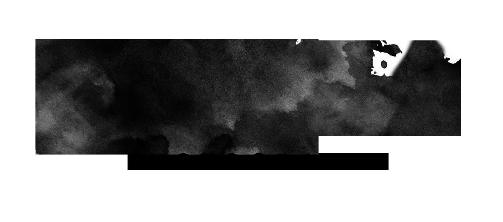 https://www.nfrt.org.nz/wp-content/uploads/2019/08/Billie_logo_05.png